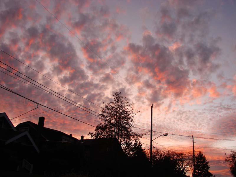 sunset-on-51st-2